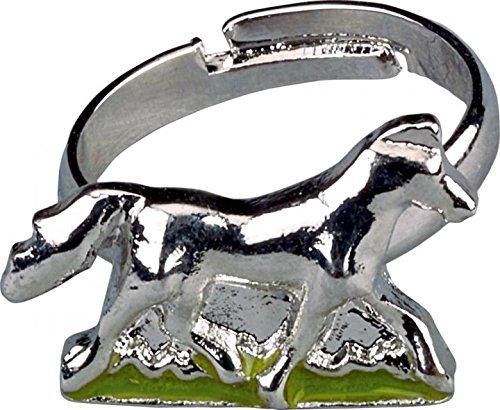 Die Spiegelburg 12422 Sammeldöschen mit Ring oder Armband Pferdefreunde, Sortiert-Preis für 1 Stück