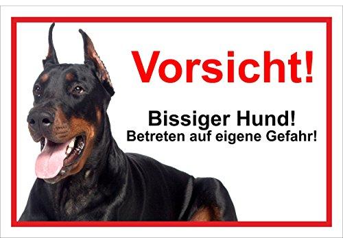 Schild Warnschild Vorsicht freilaufender Hund – Dobermann Achtung Bissiger Hund – 20x30cm –...
