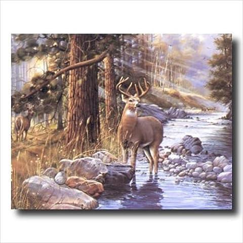 Whitetail Buck Deer Doe Lake Animal Wildlife Cabin Lodge Wall Picture Art Print