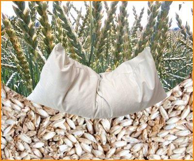 Bio-Dinkelspreukissen mit Kissenhülle aus Bio-Baumwolle naturbelassen (40x60)