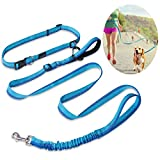 Hands Free Dog Lead, PETBABA 120-180cm Long Reflective Safe at Night Walking Bungee Shock Absorbing Adjustable Nylon Jogging Running Leash with Double Handle to Control Train Your Pet in Blue