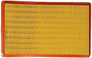 Purolator 79911471 High Performance Replacement Air Filter for Hyundai Santro Xing