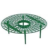 Mifive 10Pcs Strumento Pianta nel Plastica Fragola Crescente Cerchio Supporto Cremagliera Telaio Agricolo Vite da Giardinaggio