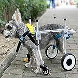 DAN Hund Rollstuhl Medizinischer Hund-Rollstuhl geeignet für Haustier Hinterbein Praxis Rehabilitation Glied Behinderten behinderte verletzt Assist Walking, große kleine Hunde, einstellbar,S