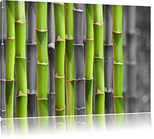 frischer grüner Bambus schwarz/weiß Format: 100x70 auf Leinwand, XXL riesige Bilder fertig gerahmt mit Keilrahmen, Kunstdruck auf Wandbild mit Rahmen, günstiger als Gemälde oder Ölbild, kein Poster oder Plakat - Insel Bambus-rahmen