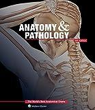 Anatomy & Pathology: The World's Best Anatomical Charts Book (The World's Best Anatomical Chart Series) by Anatomical Chart Company (2014-06-30)