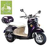 Scooter électrique RP-XLS11-EEC