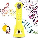 Bearbro Microfono Karaoke Bluetooth Wireless Karaoke Microphone per Bambini Microfono Senza Fili miglior Regalo per Ragazzi e Ragazze Compleanno Kids Karaoke Machines