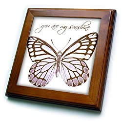 3dRose ft_99235_1 Inspirational Pink Butterfly with You are My Sunshine-Framed Tile, 8 by 8-Inch