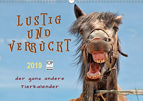 Lustig und verrückt - der ganz andere Tierkalender (Wandkalender 2019 DIN A3 quer): Schöne Tierbilder, die Freude machen. (Monatskalender, 14 Seiten ) (CALVENDO Tiere)