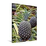 Premium Textil-Leinwand 60 cm x 90 cm hoch, Ananas, Oahu | Wandbild, Bild auf Keilrahmen, Fertigbild auf echter Leinwand, Leinwanddruck (CALVENDO Natur)