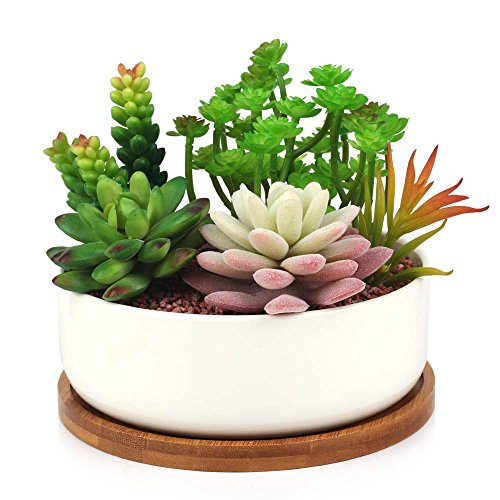 succulent-planter-innoter-modern-white-ceramic-cactus-flower-pot-plant-pot-with-bamboo-tray-round