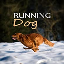 Running Dog - Free Animals, Soothing Nature Sounds for Puppies & Cats, Calm Down Your Animal Companion