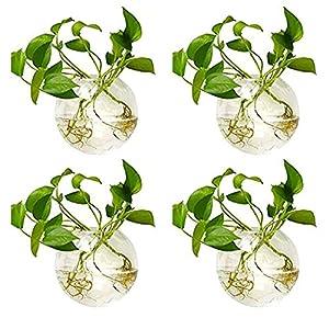 Nuptio 4 Piezas de Macetas de Vidrio para Colgar en la Pared, 10cm de Diámetro, Maceta de Vidrio Redonda, Jarrones para Plantar Agua, Florero de Aire, Terrarios de Plantas, Contenedor de Plantas