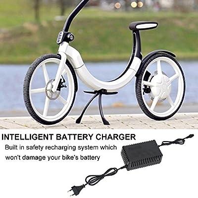 e-bike Ladegerät mit 24V, 1.6-2.0A Output, für Elektroräder Roller (EU)