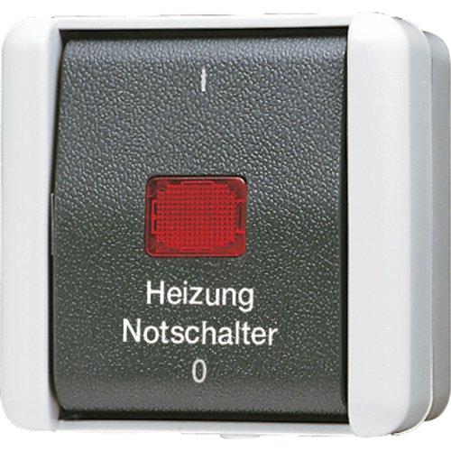 Jung AP-Schalter 802HW 2polig, 250 V -