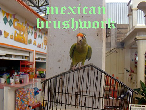 Mexico Street Sign (mexican brushwork (English Edition))