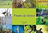 Pointe de Grave - faune des marais : Un petit aperçu de la faune des marais de la Pointe de Grave. Calendrier mural A4 horizontal