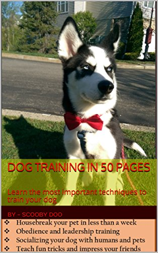 DOG TRAINING IN 50 PAGES: Learn the most important techniques to train your dog (Volume Book 1) (English Edition)