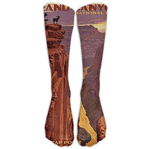 Grand Canyon National Park - Toroweap Point Knee High Graduated Compression Socks for Women and Men - Best Medical, Nursing, Travel & Flight Socks - Running & Fitness