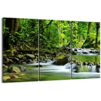 Suchergebnis auf f r dschungel regenwald bilder poster kunstdrucke skulpturen - Poster wanddurchbruch ...