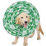 Mignon84Cook Komfortables Hundehalsband, waschbares Schutz-Nylontuch Recovery Pet Cover Kapuze für Hunde Katze (XS S M L XL) grün