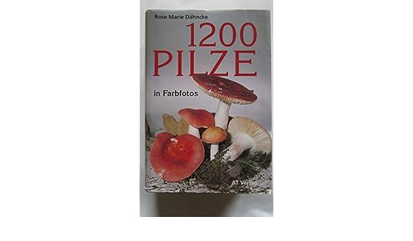 Zwölfhundert Pilze in Farbfotos: Amazon.de: Rose M. Dähncke, Sabine ...
