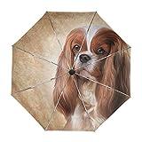 alaza Cavalier King Charles Spaniel Cane Viaggi Umbrella Auto Allargare la Protezione UV Antivento Leggero Ombrello