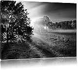 schöne Lichtung im Wald schwarz/weiß Format: 120x80 auf Leinwand, XXL riesige Bilder fertig gerahmt mit Keilrahmen, Kunstdruck auf Wandbild mit Rahmen, günstiger als Gemälde oder Ölbild, kein Poster oder Plakat