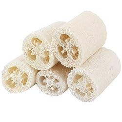 Westeng Lote de 5 esponjas...