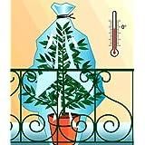 Lot de 12 (6GM et 6 PM) Voiles d'Hivernage Protection Gel Plantes