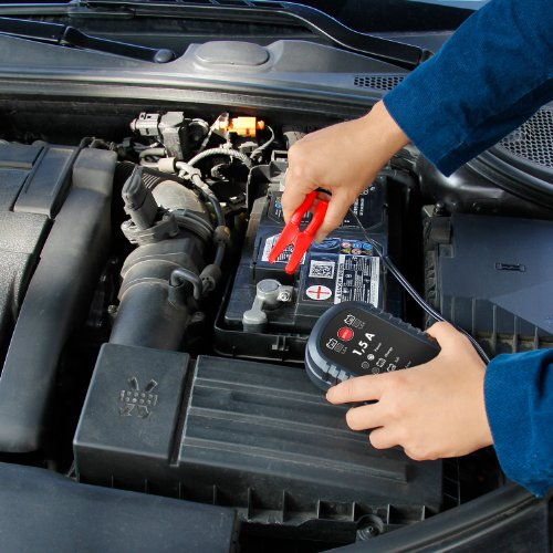 AEG-Automotive-Mikroprozessor-Ladegert
