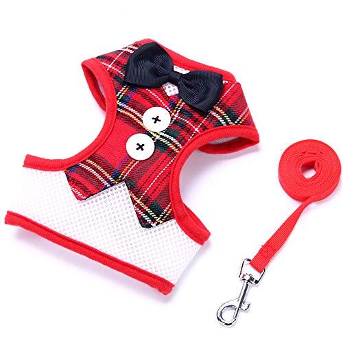 1 Dog Harness Leash Lead Set Non Pull Dog Harness Harness Leash Set für kleine mittlere Dog Adjustable Dog Harness Training Walking-3 Colers&3 Größen -