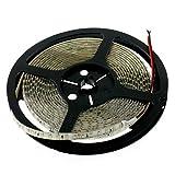 LED Streifen rot 24V, 500cm, 120 LEDs/m (600 Stk.), IP65