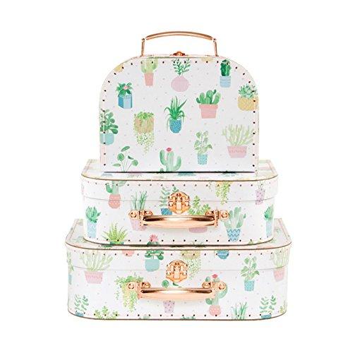 Set de 3Cactus Pastel maletas