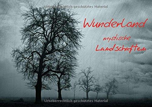 Wunderland - mystische Landschaften (Posterbuch DIN A4 quer): Landschaftsbilder, die durch ihre kreative Bearbeitung bestechen (Posterbuch, 14 Seiten ) (CALVENDO Natur)