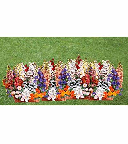 Willemse France 2 Tapis de Fleurs parfumées en mélang
