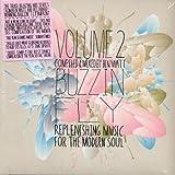 Buzzin' Fly Volume 2 - Mixed by Ben Watt