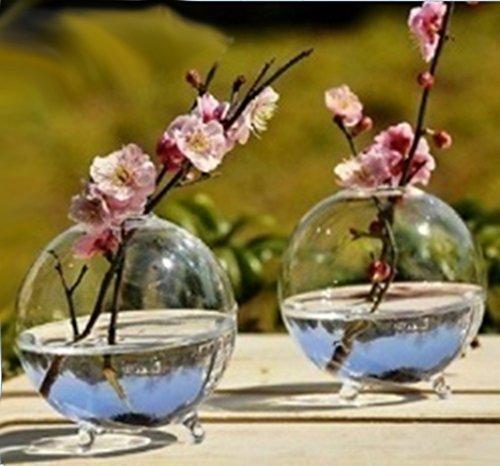 Preisvergleich Produktbild Sharplace Klare Kugel Vase Glasvase Dekovase für Büro Haus Schreibtisch Deko