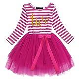 Neugeborene Säuglings Kleinkind Baby Mädchen Ist es Mein 1. / 2. / 3. Geburtstags Gestreiften Tüll Tütü Prinzessin Kleid mit Bowknot Partykleid Fotoshooting Outfits Kostüm Rose