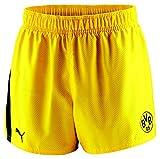 Puma BVB Shorts Herren Borussia Dortmund 09 Trainingsshort Freizeihose