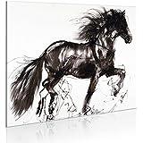 murando - Cuadro pintado a mano 77x55 cm -100% pintados a mano - cuadro en lienzo - caballo - 8235