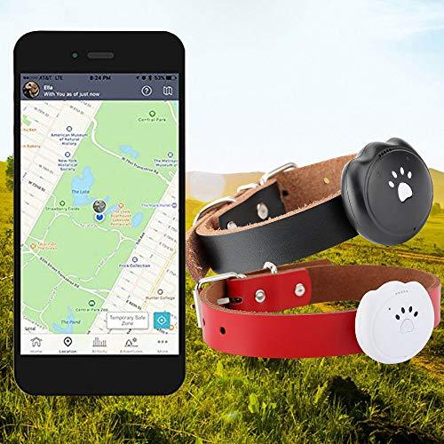 GPS Tracker Tractive 3G Dog Rastreador de GPS Buscador de Mascotas el...