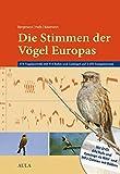 Die Stimmen der Vögel Europas - 474 Vogelportraits mit 914 Rufen und Gesängen auf 2.200 Sonagrammen (m - mp3-DVD) - Hans H Bergmann, Hans W Helb, Sabine Baumann