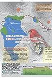 Shiretoko Fieldguide 1  Rausuko Trekking guide (Japanese Edition)