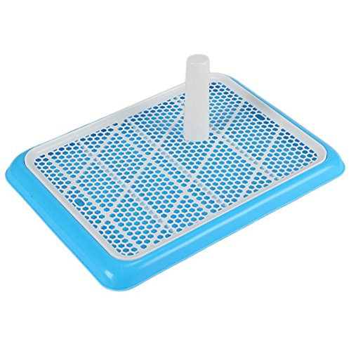 Toilette Doggy Training Potty Pad,Blue ()
