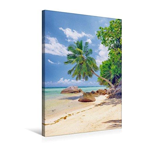 Premium Textil-Leinwand 50 cm x 75 cm hoch, Glitzernde, ruhige Bucht mit malerischen Palmen und Felsen bei Anse a la Mouche | Wandbild, Bild auf a la Mouche, Mahe, Seychellen (CALVENDO Orte)
