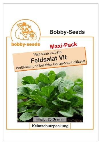 Bobby-Seeds Salatsamen Feldsalat Vit Maxipack