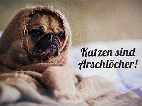 Mops Katzen sind Arschlöcher Postkarte 15 cm Foto Karte Sammelkarte Deko GP 300 - Mops-fotos