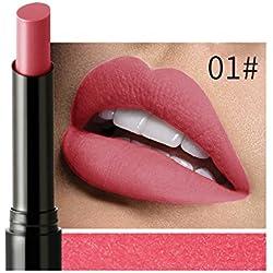 Liquidation !!! OSYARD Beauté Longue durée Velours Mat Couleur Crayon Imperméable Rouge à lèvres Crayon Sexy Maquillage(#01)